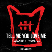 [Download] Tell Me You Love Me (Toby Green Remix) MP3