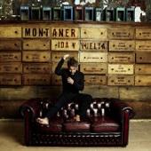 Un Hombre Normal - Ricardo Montaner