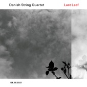 Danish String Quartet - Last Leaf  artwork