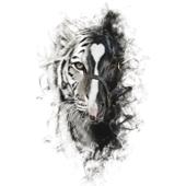 Para Sacarte De Mi Vida (feat. Los Tigres del Norte)