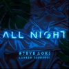 All Night - Steve Aoki & Lauren Jauregui mp3