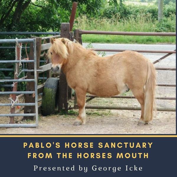 Pablo's Horse Sanctuary's Podcast