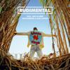 These Days (feat. Jess Glynne, Macklemore & Dan Caplen) - Rudimental