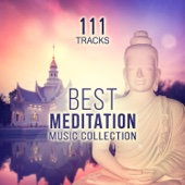 111 Tracks: Best Meditation Music Collection - Serenity Nature Sounds (Springwater, Birds & Gentle Rain) Yoga, Relaxing Instrumental Songs and Transcendental Meditation Mantras for Zen Garden