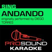 Andando (Originally Performed by Diego Torres) [Instrumental Version]