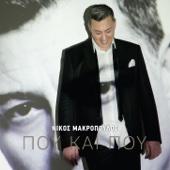 Nikos Makropoulos - Pou Eisai artwork