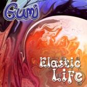 Karunesh - Punjab (Gumi Remix) portada
