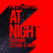 At Night (feat. Liz Elias and Akon) - Single cover art