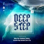 Deepstep .01 Lp cover art