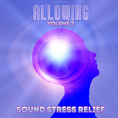 Sound Stress Relief: Allowing, Vol. 2