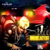 Indicator - Spice