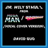 Dr. Wily Stage 1 (from