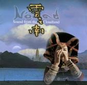 Worshipping the Ancestors - Hao Han