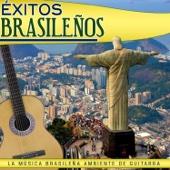 Éxitos Brasileños. La Música Brasileña, Ambiente de Guitarra