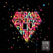 2013 BIGBANG Alive Galaxy Tour - The Final In Seoul cover art