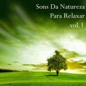 Sons da Natureza para Relaxar, Vol. 1