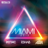 Miami 2013 (Mixed By Mync, R3Hab, Nari & Milani)