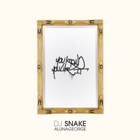 You Know You Like It - Single - DJ Snake & AlunaGeorge
