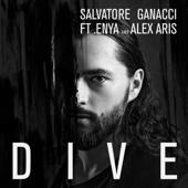 Dive (feat. Enya and Alex Aris)