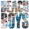The Beach Boys ジャケット写真