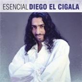 Esencial Diego