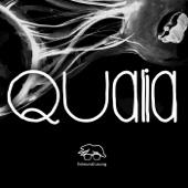 Qualia (The Interzone Collective)