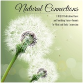 Natural Connections - 1 Hour Meditation Music and Soothing Nature Sounds for Mind and Body Connection