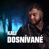 Dosnívané - Kali
