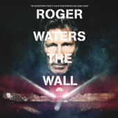Another Brick In the Wall, Pt. 2 (Live) - Roger Waters