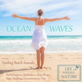 Just Relaxing Wave Ambience At the Sea For Studying, Meditation, Deep Sleep
