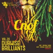 Dubwise Brilliants, Vol. 20 - Single cover art
