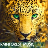 Rainforest Music - Soothing Lullabies for Relaxation, Relaxing Sounds of Nature Background