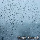 [Download] Relaxing Night Rain MP3