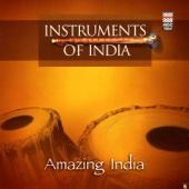 Amazing India (Instruments of India)