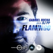 Flamingo (Gabriel Rocha aka DJ PP) - Single cover art