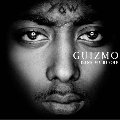 Dans 10 ans - Guizmo