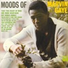 Moods of Marvin Gaye, Marvin Gaye