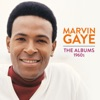 Marvin Gaye: The Albums 1960s, Marvin Gaye