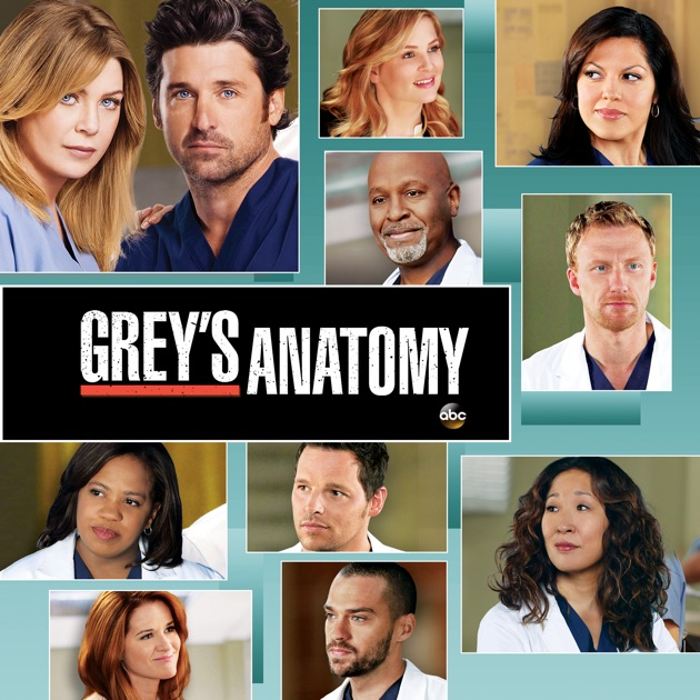 Greys anatomy s9