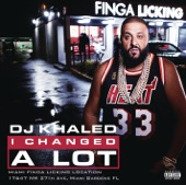 DJ Khaled - I Changed a Lot  artwork