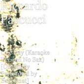 One Day (Karaoke Version No Sax) [Originally Performed by Bakermat] - Riccardo Pascucci