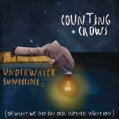 Underwater Sunshine (or What We Did On Our Summer Vacation) cover art