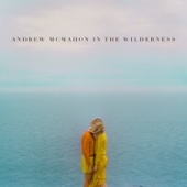 Andrew McMahon In the Wilderness - Cecilia and the Satellite  artwork