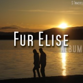 Fur Elise - Moonlight Sonata artwork