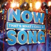 Various Artists - Now That's What I Call a Song artwork
