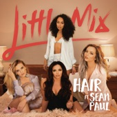 Hair (feat. Sean Paul) [Wideboys Remix] - Single