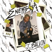 Safari (feat. Pharrell Williams, BIA & Sky) - J Balvin