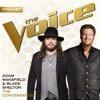 The Conversation (The Voice Performance) - Single, Adam Wakefield & Blake Shelton