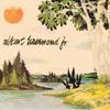 Yours to Keep - Albert Hammond Jr., Albert Hammond Jr.