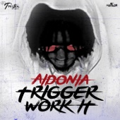 Trigger Work it - Aidonia